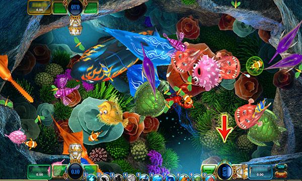Agen Ikan Online Terbaik